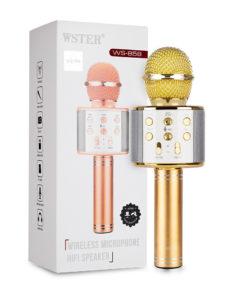 1870320256_w640_h640_karaoke-mikrofon-wster
